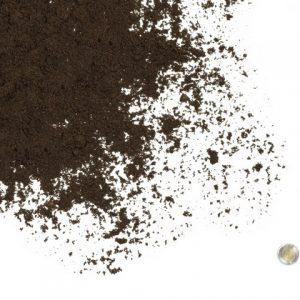 Jackpine Sand