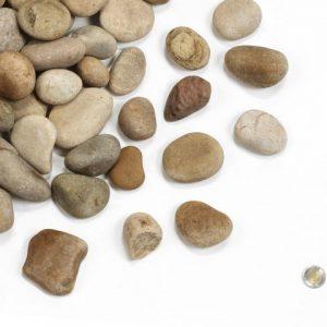 "2"" - 3"" Summer Stone"